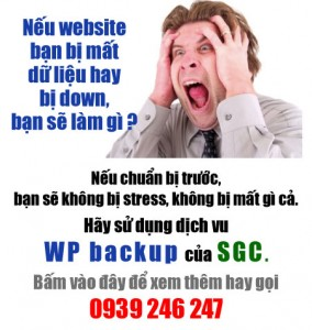 Bao hiem cho website cua ban voi dich vu WP backup